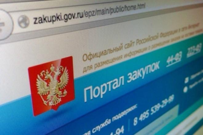 Подготовка заявок для аукционов - Госзакупки 1 - kwork.ru