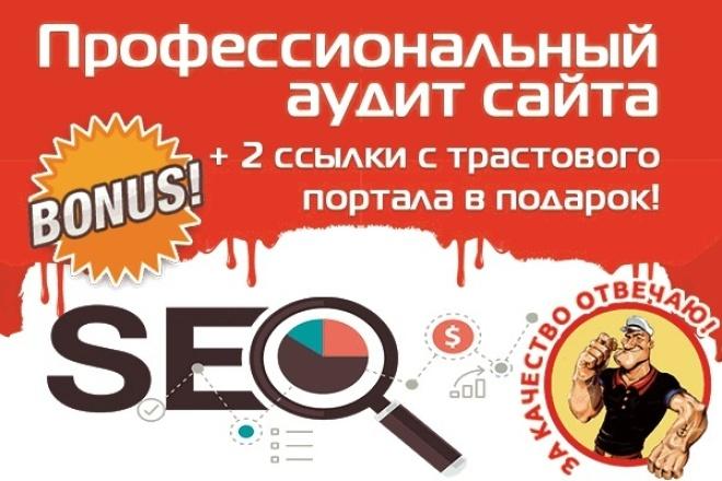 Профессиональный SEO аудит (анализ) вашего сайта + 2 трастовые ссылки в подарок 1 - kwork.ru
