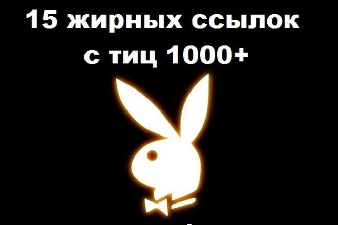 Размещу 15 вечных ссылок на ваш сайт в ЯК с ТИЦ от 1000 + бонус 1 - kwork.ru