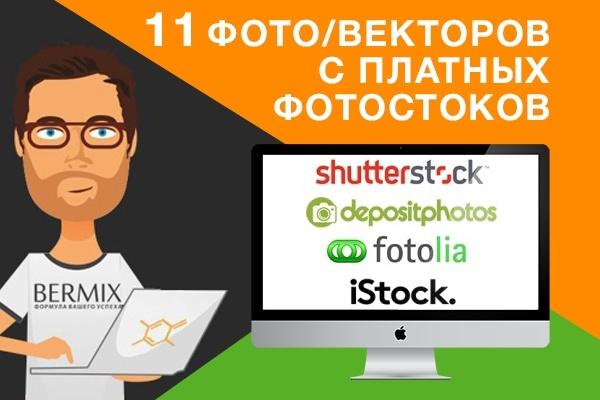 Скачаю 11 фото с платных фотостоков 1 - kwork.ru