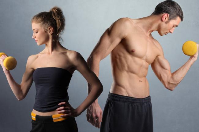 Напишу программу тренировок для мужчины или женщиныЗдоровье и фитнес<br>Напишу индивидуальную рабочую программу тренировок для любого типа телосложения (будь то набор мышечной массы либо сжигание жира). Составлю также подробный план питания с консультацией.Отвечу на все ваши вопросы касательно фитнеса. Поделюсь своим опытом.<br>