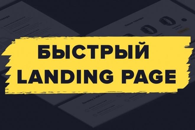 Создание Landing Page на Wordpress по ключ с уникальным дизайном 1 - kwork.ru