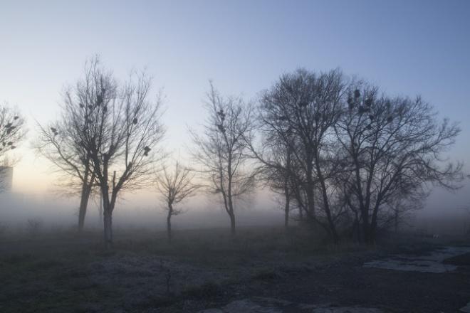 Сделаю художественную обработку фотографий 1 - kwork.ru