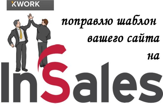 поправлю шаблон на inSales 1 - kwork.ru