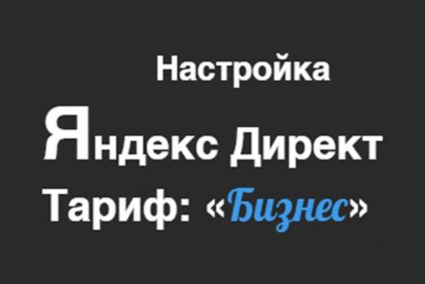 Настроим и запустим ЯндексДирект +ГуглАдВордс за два часа, качественно 1 - kwork.ru