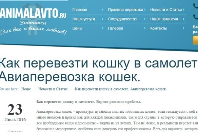 напишу несколько сео-статей 1 - kwork.ru