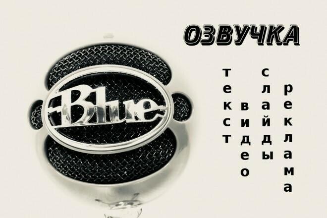 Озвучу текст для рекламы, презентации, видеоролика, инфографики 1 - kwork.ru
