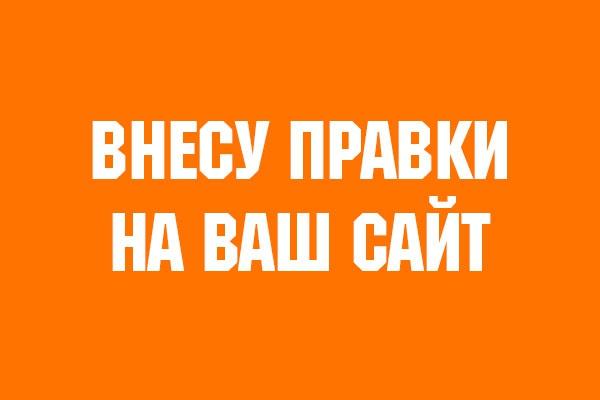 Внесу правки на Ваш сайт 1 - kwork.ru