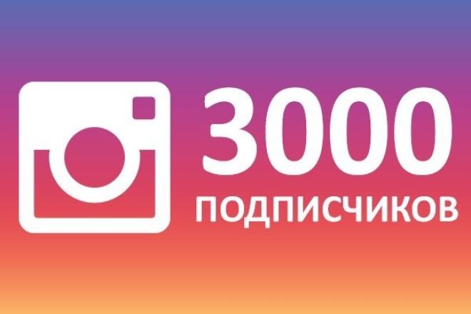 3000 живых подписчиков в Инстаграм + Бонус 1 - kwork.ru