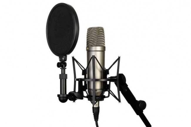 Озвучка видео, запись текста для рекламыАудиозапись и озвучка<br>Запишу любой ваш текст на профессиональном оборудовании. Также могу наложить текст на выбранную вами музыку или видео.<br>