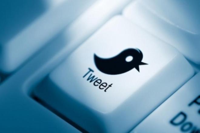 """200+ Ссылок с твиттера. Отличный """"сигнал"""" для поисковиков 1 - kwork.ru"""