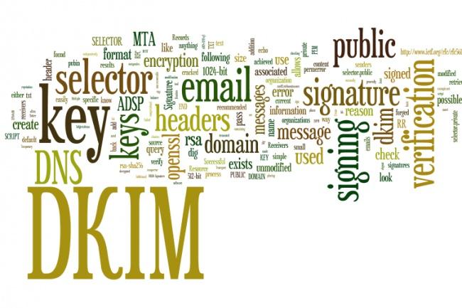 сделаю, чтобы ваши письма не попадали в спам. Настройка dkim 1 - kwork.ru