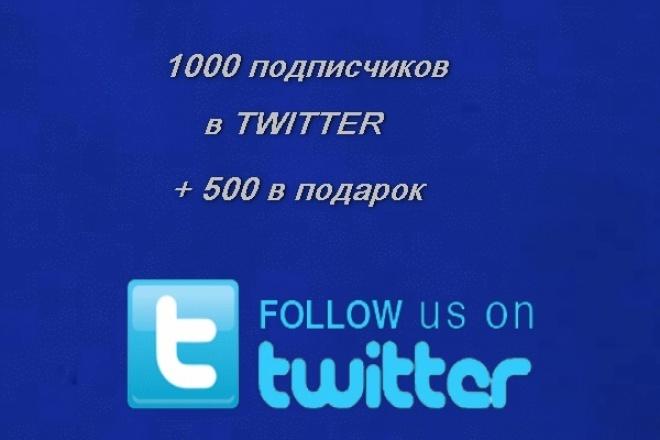 1000 подписчиков в Twitter + 500 в подарок 1 - kwork.ru