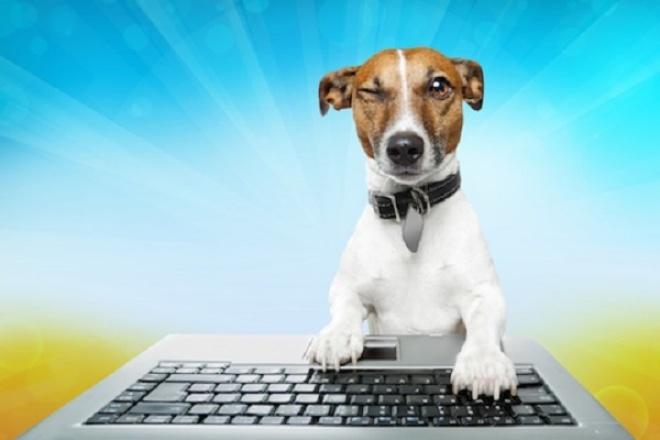 Напишу несколько красивых статейСтатьи<br>Напишу для Вас качественные, грамотные тексты на любую тематику. Выполню работу в срок. В один кворк входят 4 статьи.<br>