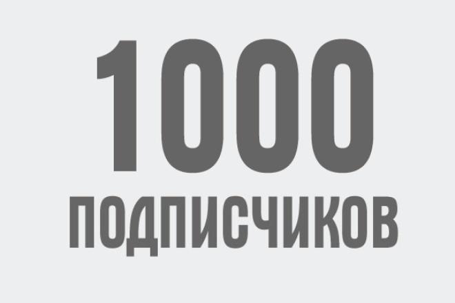 1000 подписчиков! Вконтакте 1 - kwork.ru