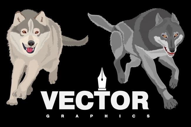 Векторная графика, Перевод растрового фото изображения в векторное 1 - kwork.ru