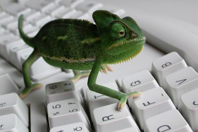 Наберу для вас текстНабор текста<br>Приветствую! Наберу для вас текст со сканированных страниц (как рукописных, так и напечатанных).<br>