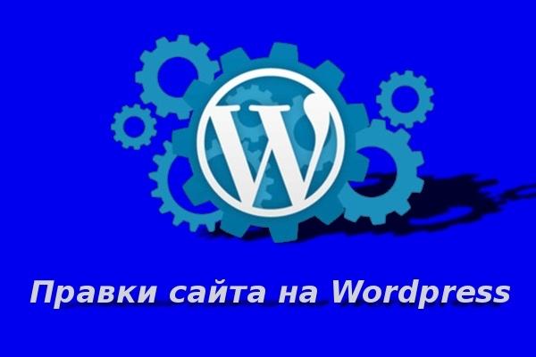 Правки сайта на Wordpress 1 - kwork.ru