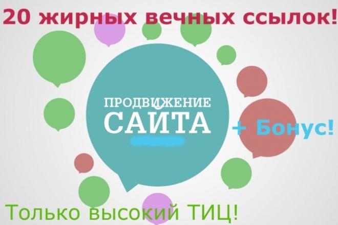 20 жирных вечных ссылок с трастовых сайтов плюс бонус! 1 - kwork.ru