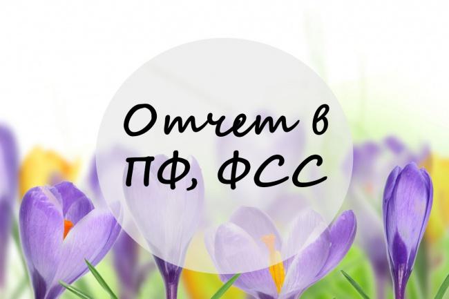составлю отчет в ПФ или ФСС 1 - kwork.ru