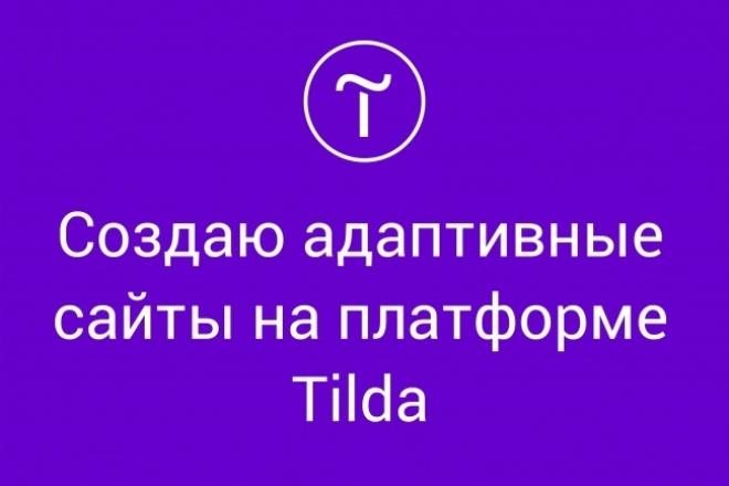 Лендинг или сайт-визитка на платформе Tilda 1 - kwork.ru