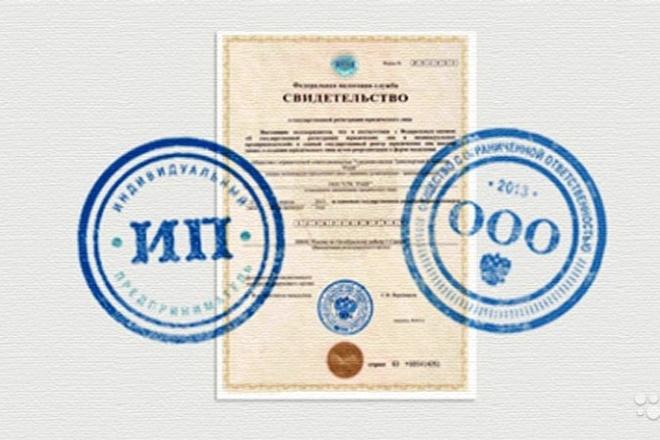 Зарегистрирую ООО, ИП 1 - kwork.ru