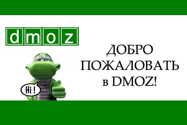 Как попасть в dmoz. Аудит и консультация 1 - kwork.ru