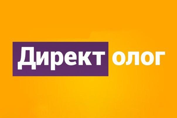 приведу клиентов с Яндекс Директ Поиска 1 - kwork.ru