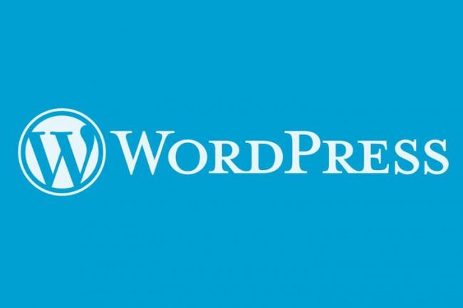 Исправлю ошибки и различные проблемы на WordPress 1 - kwork.ru