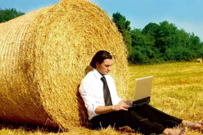 Напишу качественные тексты на сельскохозяйственную тематику 1 - kwork.ru