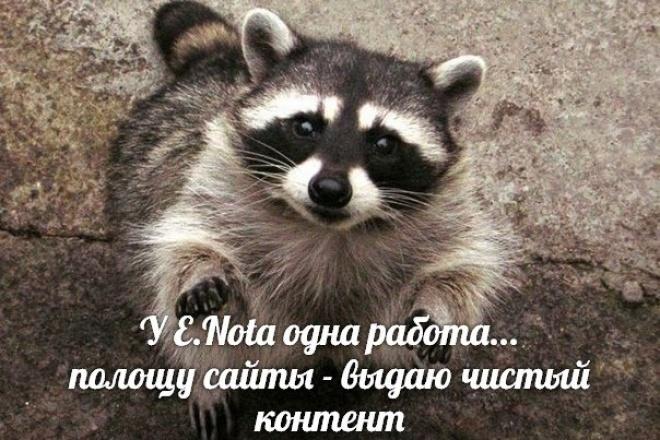 Пишу SEO-оптимизированные тексты 1 - kwork.ru