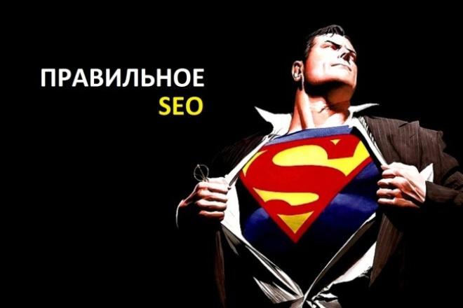 Консультация по эффективному SEO продвижению в ТОП Яндекса 1 - kwork.ru