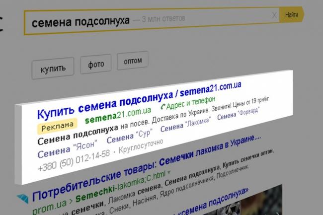 Контекстная реклама в Яндекс Директ. 200 ключевых запросов 1 - kwork.ru