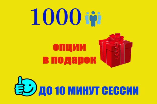1000 качественных посещений с задержкой до 10 минут на сайте 1 - kwork.ru