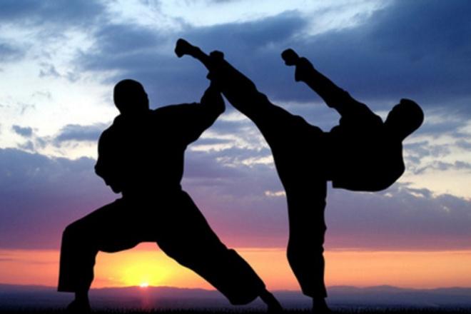 Напишу актуальную статью на тему боевые искусства 1 - kwork.ru