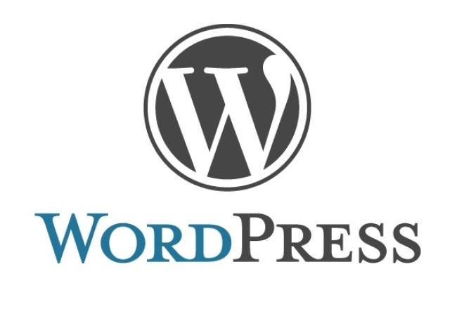 Установлю WordPress  и тему 1 - kwork.ru