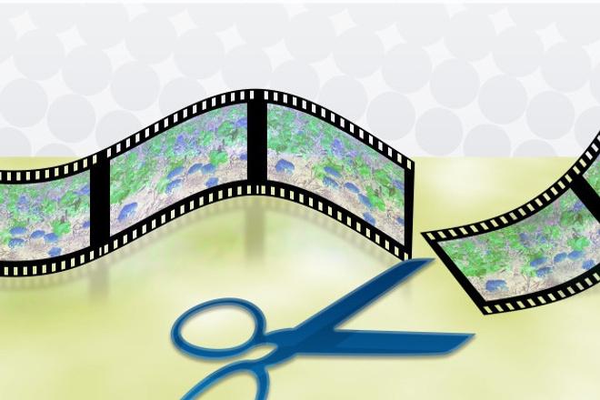 Сделаю монтаж видеоМонтаж и обработка видео<br>Качественный монтаж видео в программе Sony Vegas Pro 12 и не только. Также многое другое можно заказать в моем кворке.<br>