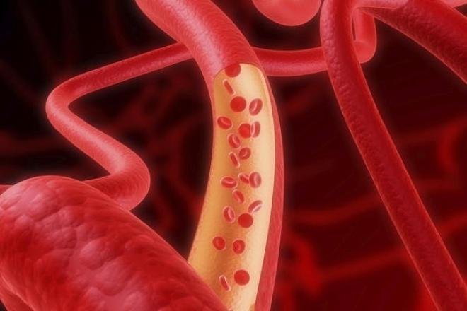 Продам статью Кровеносные сосудыСтатьи<br>Предлагаю статью Кровеносные сосуды. В статье рассказывается о строении кровеносных сосудов, большом и малом кругах кровообращения. 3434 символа без пробелов Уникальность 100 % по content-watch<br>