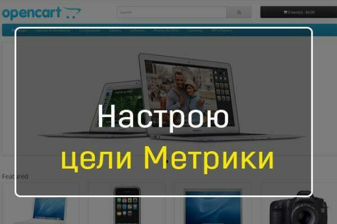Настрою цели Метрики 1 - kwork.ru
