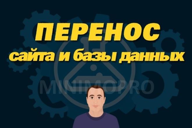 Перенесу сайт на другой хостинг или другой домен 1 - kwork.ru