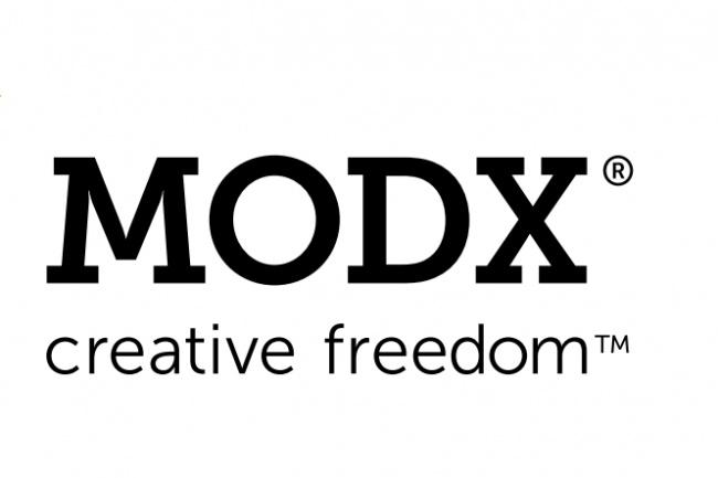 Установлю и разнесу чанки ModX 1 - kwork.ru