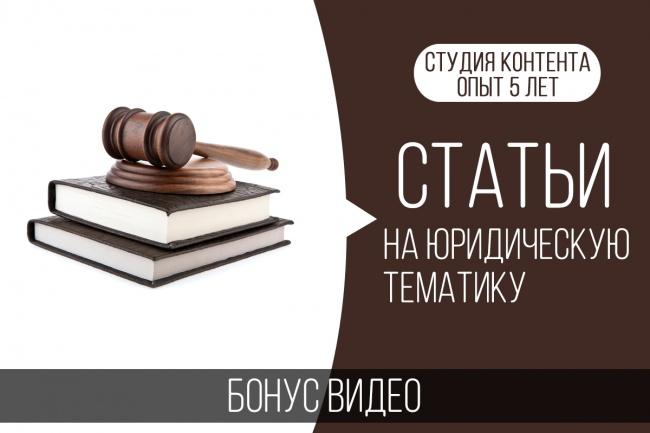 Статьи на юридическую тематику, бонус - видео 1 - kwork.ru