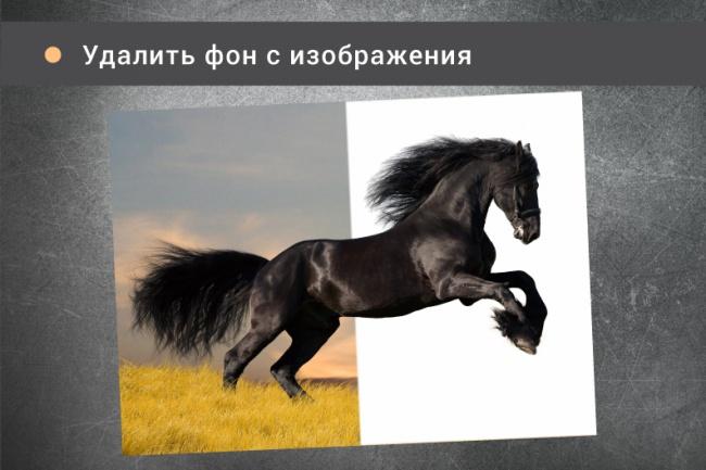Удалю фон с изображения 1 - kwork.ru