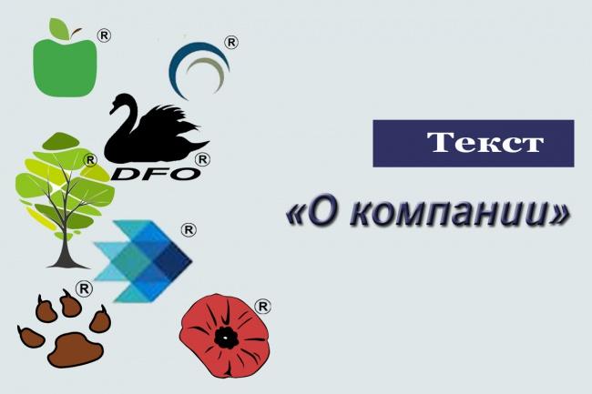 напишу текст о компании или проекте, вдумчиво и без воды 1 - kwork.ru