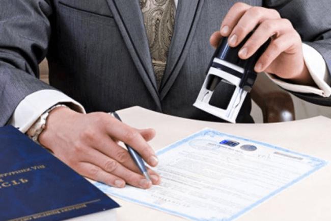 Подготовлю документы для регистрации ООО/ИП 1 - kwork.ru