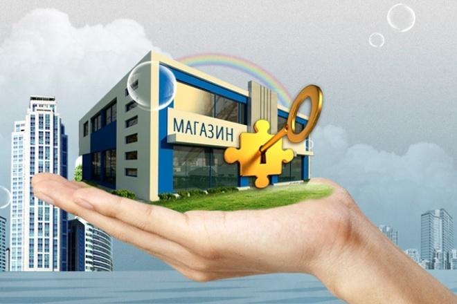 Интернет-магазин под ключ за 1 день 1 - kwork.ru