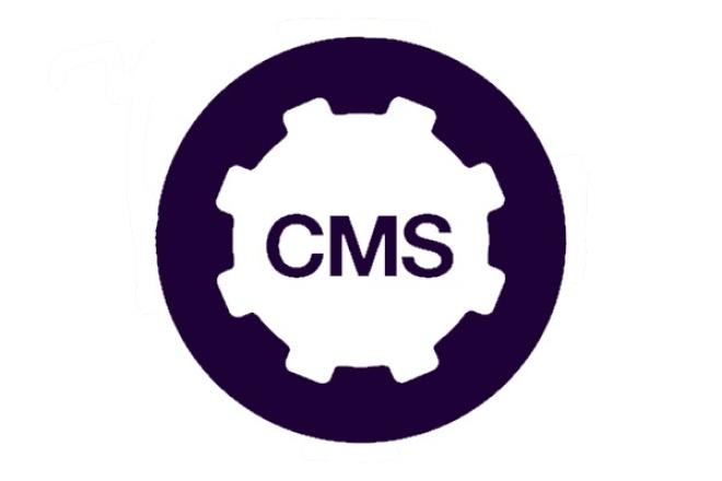 Сделаю сайт на уникальной CMS 1 - kwork.ru