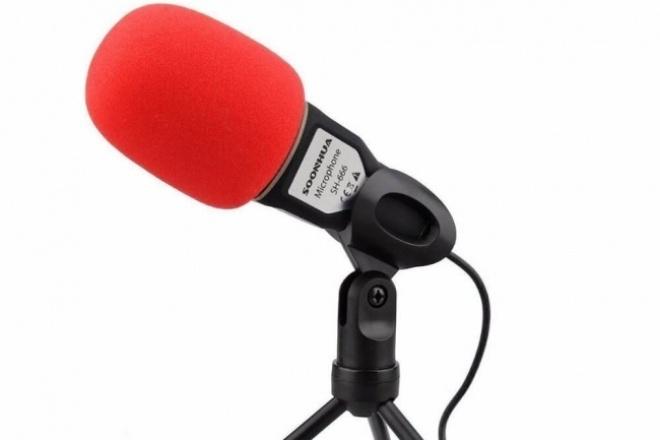 Поработаю со звукомРедактирование аудио<br>Удаление шумов, щелчков, наводок и прочего. Редакция аудио файла. Частотная и динамическая обработка. Частотное вытягивания западающего спектра. Придам голосу тело и форму. Доведу запись до максимального возможного качества. Применяется лучшее профессиональное плагины от Manny Marroquin и проч.<br>