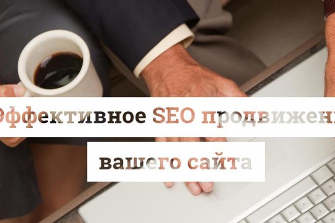 Раскручу сайт 1 - kwork.ru