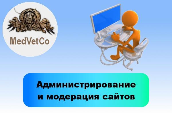 Администрирование и модерация сайтов и соцсетей 1 - kwork.ru